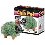 Chia Pet Pet, Pig 1 ea
