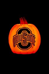 "Ohio State Buckeyes Pumpkin Luminary includes 8 hour timer function 7 1/4""x6"" - Ohio State"