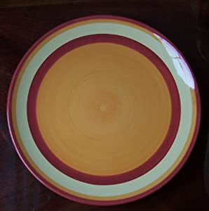 southern living at home gail pittman hand painted banded dinner plate