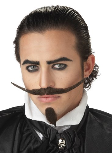 California Costumes Men's The Dandy Moustache & Chin Costume Accessory