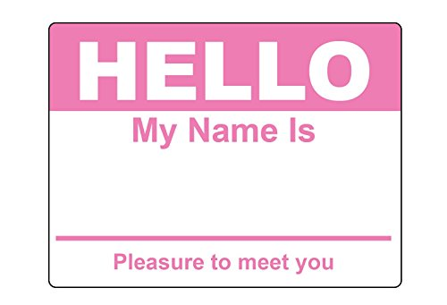 Pink Hello My Name Is Name Badge Tag Labels Stickers - 1 Roll