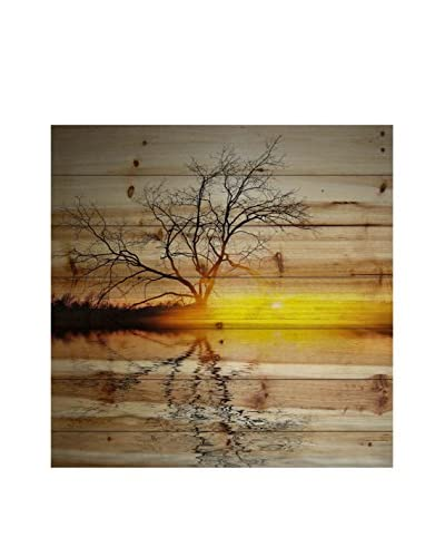 Parvez Taj Killaloe Pine Wood Wall Art