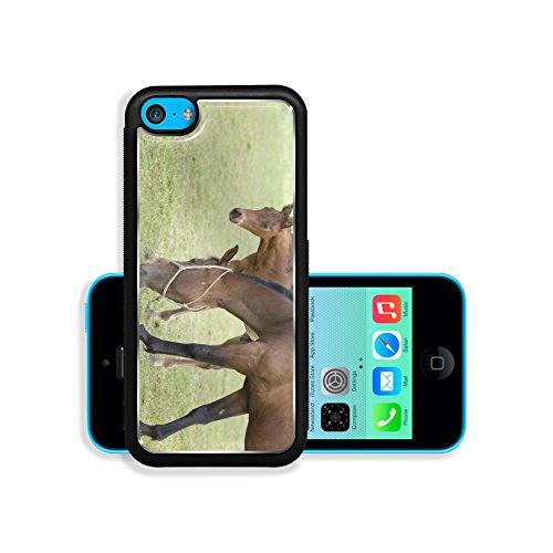 liili-premium-apple-iphone-5c-aluminum-backplate-bumper-snap-case-brown-horse-and-her-foal-on-ranch-