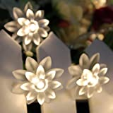 Innoo Tech Battery Operated Fairy Lights String 4M 40 Warm White Lotus Flower LED String Lights for Christmas Tree