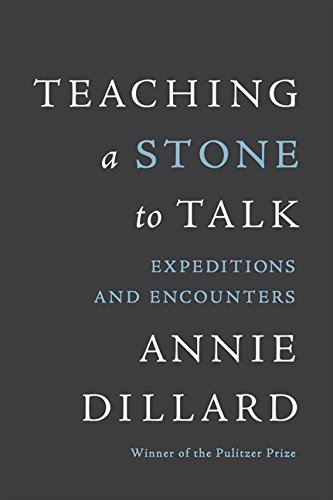 teaching-a-stone-to-talk-expeditions-and-encounters