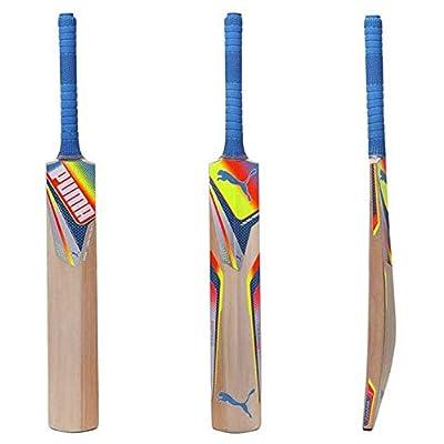 Puma evoSPEED GTR Kashmir Willow Cricket Bat Sh (89366801)