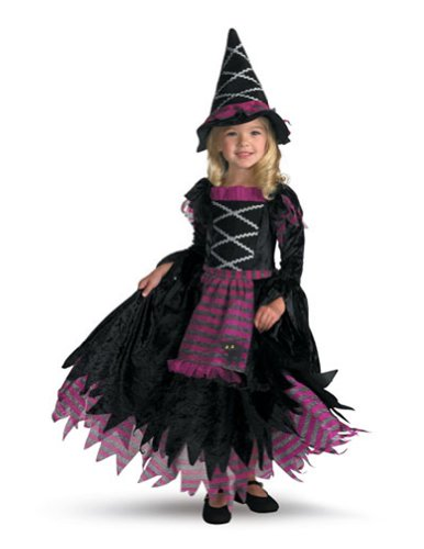 Fairy Tale Witch 4 To 6 Child Kids Girls Costume