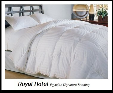 Royal Hotel's 1200-Thread-Count King Size White Siberian Goose Down Comforter 100 percent Egyptian-Cotton 1200 TC - 750FP - 50Oz - Stripe White: