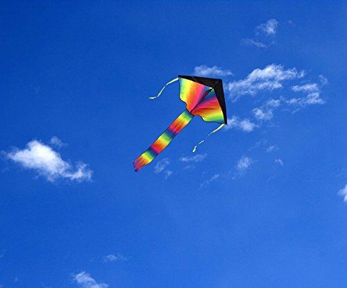 Horizon-arc-en-ciel-Kid-cerfs-volants-599-cm-Line