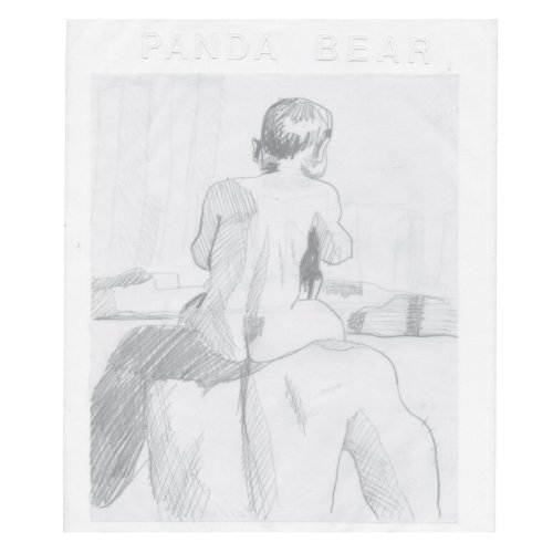 Original album cover of You Can Count On Me by Panda Bear