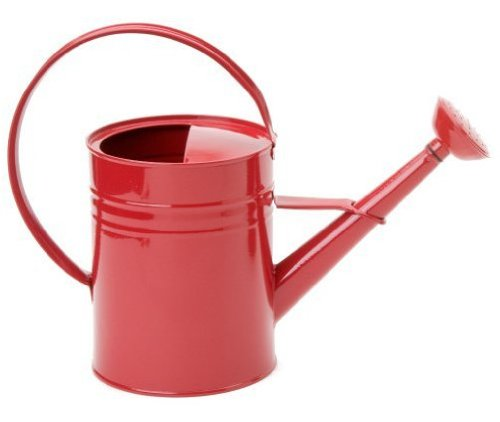 Houston international 8582e xr 1 gallon steel watering can red 097893985828 - Gallon metal watering can ...