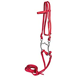 Western Bridle with Reins and Bit in Red