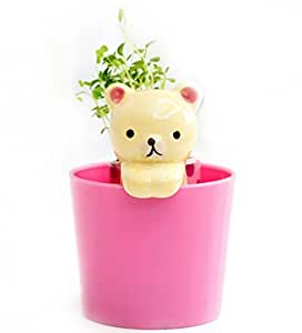 EZ Life Ez Life Diy Grow Your Own Grass Table Plants Yellow Cat With Cup