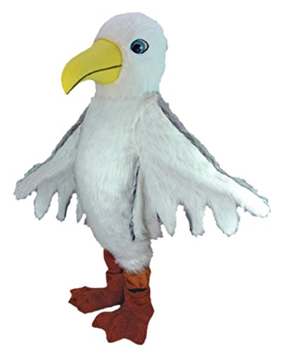 Hot S (The Seagull Costumes)