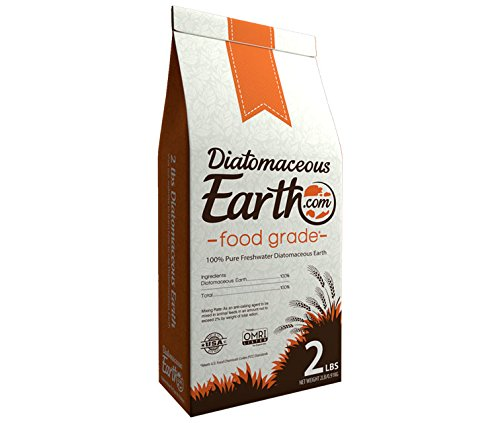 Food Grade Diatomaceous Earth Lowes