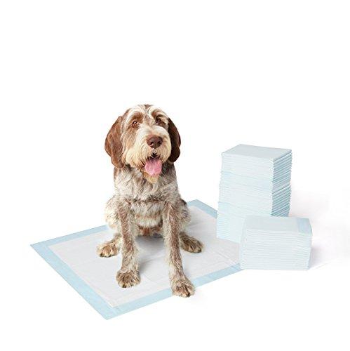 amazonbasics-toallitas-de-entrenamiento-para-mascotas-extragrande-60-unidades