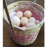食用 烏骨鶏の卵 12個入り