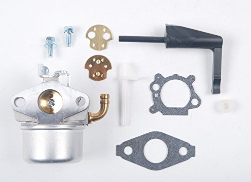 HIFROM Replaces New Carburetor Carb for Briggs & Stratton 798653 697354 790290 791077 698860 (Carburetor 798653 compare prices)