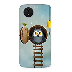 Impressive Raining Leader Owl Back Case Cover for Micromax Canvas A1