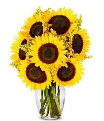 From You Flowers | Stunning Sunflowers | Free Vase Included
