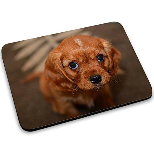 Cani 10054, Cucciolo, Mouse Pad Tappetino per Mouse Mouse Mat con Disegno Colorato Antiscivolo in Gomma di Base Ideale per Giocare 250 x 190mm.