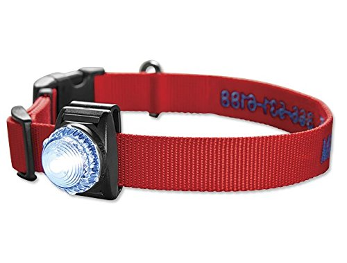 orvis-led-safety-collar-light-clear