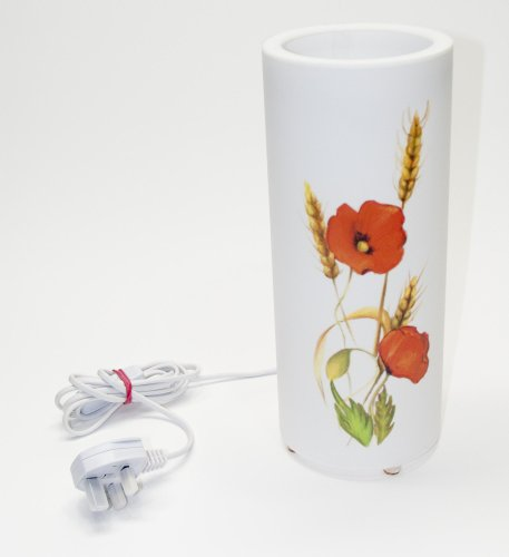 5 inch diameter 12 inch high artistic tube tablelamp / bedside lamp with a beautiful coloured painting of wild poppies