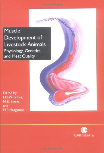 Muscle Development of Livestock Animals: Physiology, Genetics and Meat Quality (Muscle Development compare prices)
