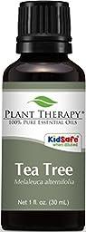 Tea Tree (Melaleuca) Essential Oil. 30 ml (1 oz). 100% Pure, Undiluted, Therapeutic Grade.