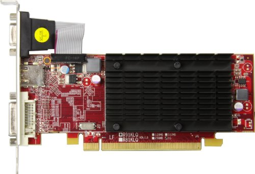 玄人志向 グラフィックボード AMD Radeon HD6450 1GB LowProfile PCI-E RGB DVI HDMI ファンレス RH6450-LE1GH/HS