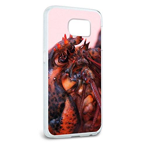 musikposter-motiv-red-maine-lobster-snap-on-harte-schutzhulle-fur-samsung-galaxy-s6
