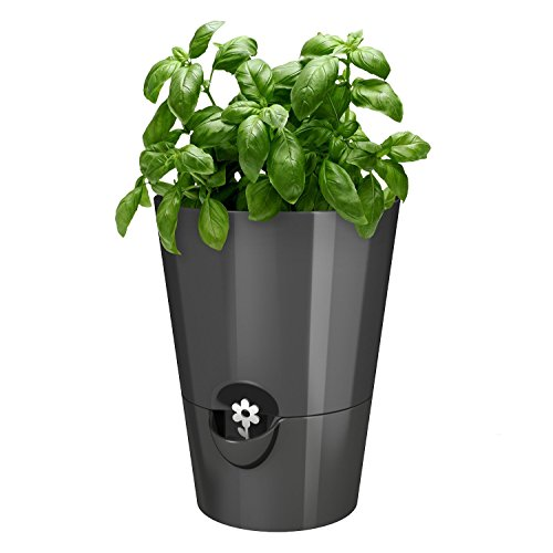 EMSA Germany - Indoor Gardening & self-watering planter keeping kitchen herbs fresh & healthy for weeks (Vaporizer Herb Kit compare prices)