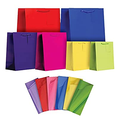 Jillson Roberts All-Occasion Solid Color Gift Bags in Assorted Sizes with Tissue, 6-Count, Brights (STAT002)