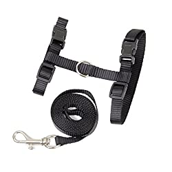 Generic Black Adjustable Pet Cat Kitten Belt Nylon Collar Leash Harness Safety Strap Traction Rope
