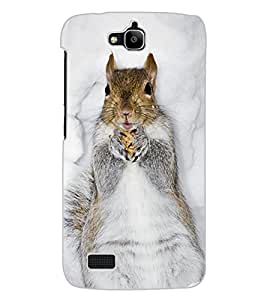 ColourCraft Cute squirrel Design Back Case Cover for HUAWEI HONOR HOLLY