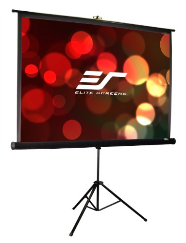 Elite Screens Tripod Pro Series, Portable Pull-up Projection Screen, 113-inch Diagonal 1:1, Model: T113UWS1-Pro