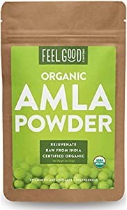 Organic Amla Powder - 4oz Resealable Bag - 100% Raw From India - by Feel Good Organics