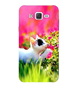 Evaluze cat Printed Back Cover for SAMSUNG GALAXY J7 2015