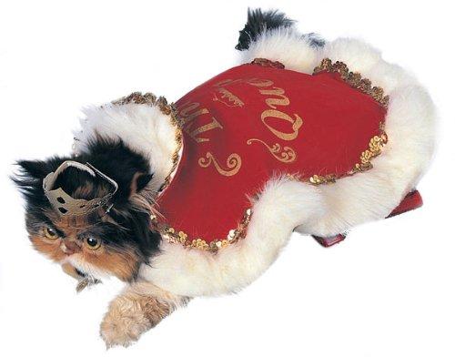 Pet Costume - Queen Dog or Cat Costume Medium
