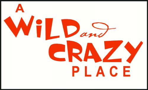 Wall Decor Plus More A Wild And Crazy Place Wall Sticker Saying for Nursery or Kid's Room Decor 23W x 12H - Orange Orange