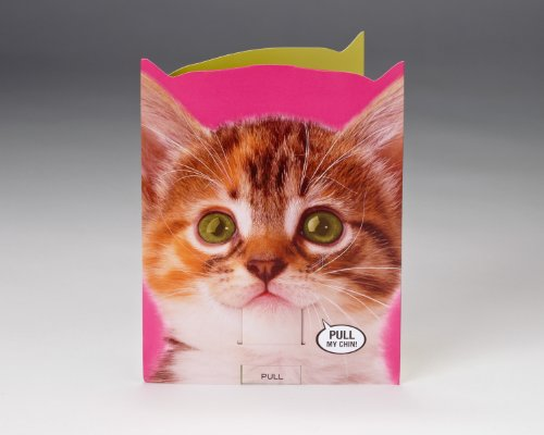 Talking Heads Festive Kitty Birthday Card
