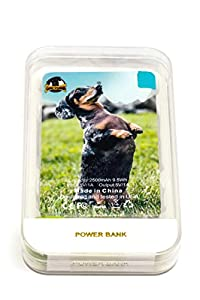 Power Bank, 2500mAh Ultra-Thin Portable Credit Card Sized Battery Cell Phone Charger ALL CONNECTORS, USB Charge Wire, MicroUSB, iPhone 4/5/6, Samsung Galaxy S3-5/S6, LG G4-100% Guaranteed (Dachshund)