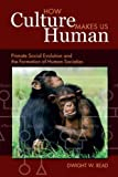 "BOOKS RECEIVED: Dwight W. Reed, ""How Culture Makes Us Human: Primate Social Evolution and the Formation of Human Societies"" (Left Coast Press, 2011)"
