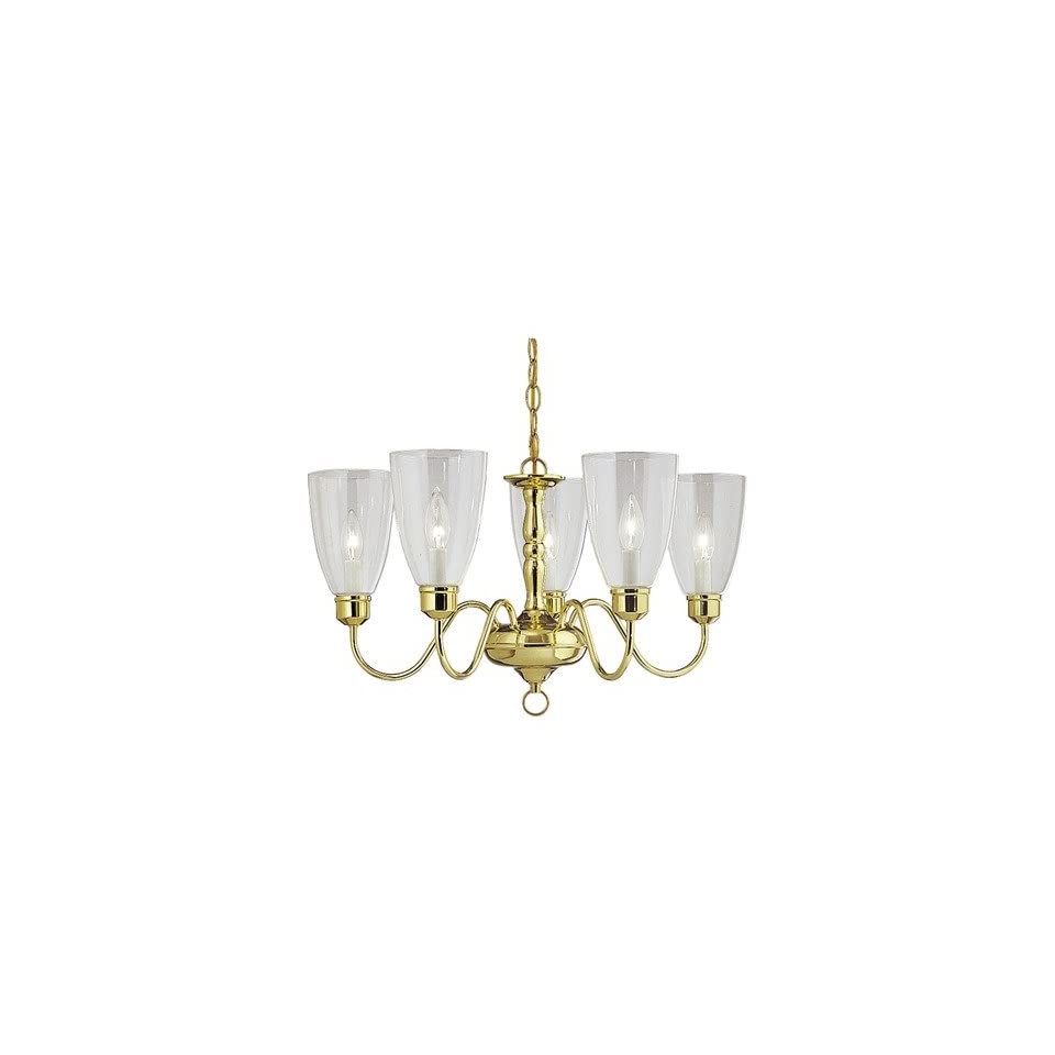 Americana 5 Candle Light Chandelier with Glass Shades