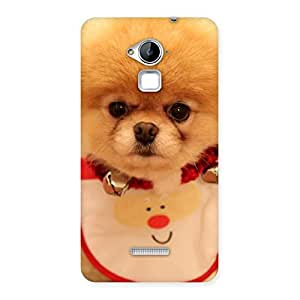 Special Cutest Pup Multicolor Back Case Cover for Coolpad Note 3