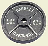 100 Pound Olympic Weight Plates - 1 Pair