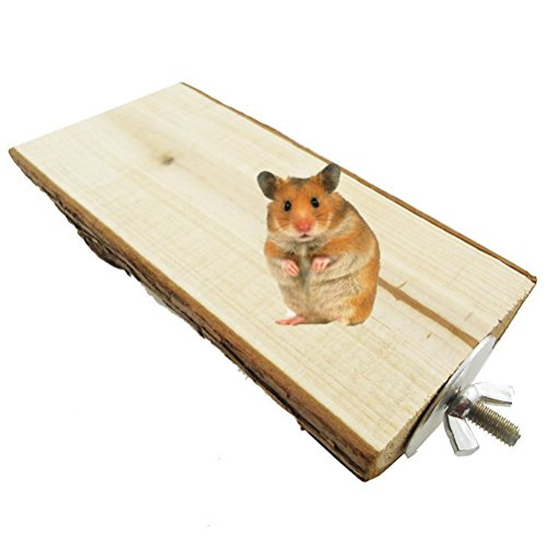 Wood-Perch-Toy-Platform-Pet-Bird-Parrot-Macaw-African-Greys-Budgies-Parakeet-Conure-Hamster-Gerbil-Rat-Squirrel-Cage-Stands-Exercise-Toy