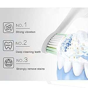 RED-NI Sonic Electric Toothbrush, 4 Free Replacement Heads Included as Gifts Ideal for Adult Children and Couples Use USB Fast Charging Waterproof Toothbrush,Model: ET201 (blue) (Color: Blue)