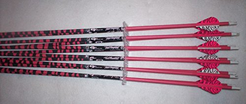 Gold Tip Ted Nugent 3555 Carbon Arrows w/Blazer Vanes 1 Dz. (Gold Tip 35 55 compare prices)