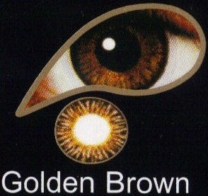 Coloured Contact Lenses with Free Solution & Case - Golden Brown (1 Month)
